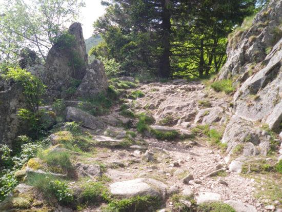 Aufstieg zum Gipfel des Hohneck