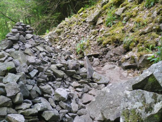 Aufstieg zum Hohneck vom Wormsatal aus