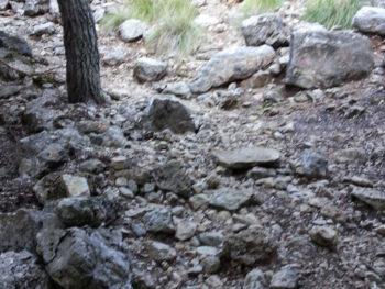 Mallorca: Aufstieg zum Camí de s'Arxiduc