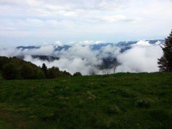 Ausblick beim Mara-Trail