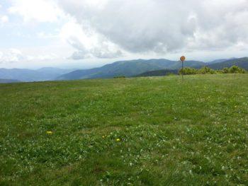 Mara-Trail Gipfel des Ballon d'Alsace