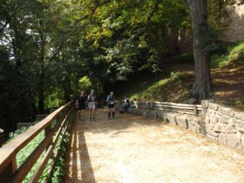 Aufstieg zur Haut-Koenigsbourg