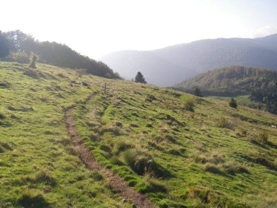 Belfortrail Panoramaweg am Schlumpf