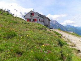 80 km du Mont-Blanc Plan de l'Aiguille