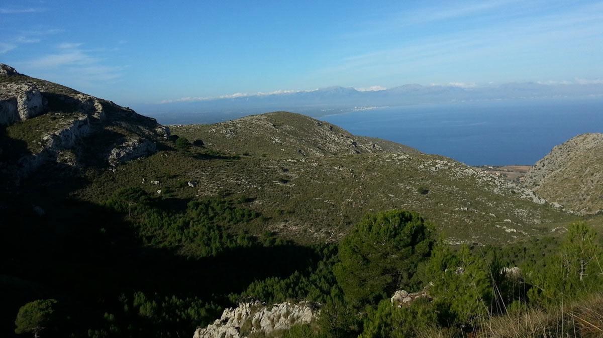 Arta Marathon Mallorca 2013