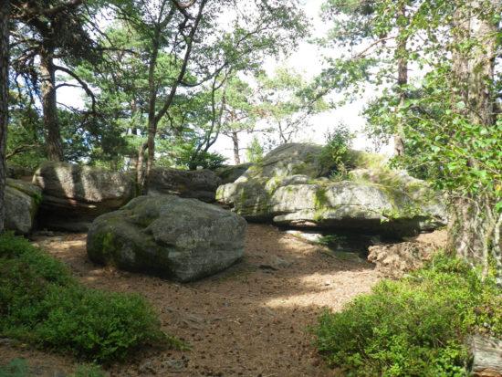 Trail du Taennchel - Rocher des Géants