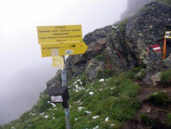 Pitz Alpine 2016