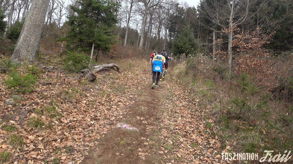 Trail du Petit Ballon 2017 - steile Rampen