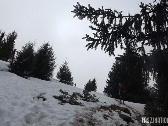 Trail du Petit Ballon 2017 - verschneiter Anstieg zum Gipfel