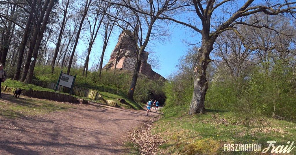 Intégrale - Burg Fleckenstein