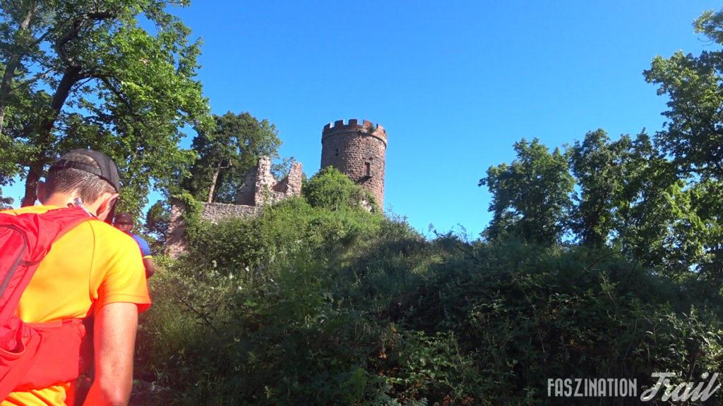 Les Courses du Taennchel – Wunderschöner, anspruchsvoller Trail in den Vogesen