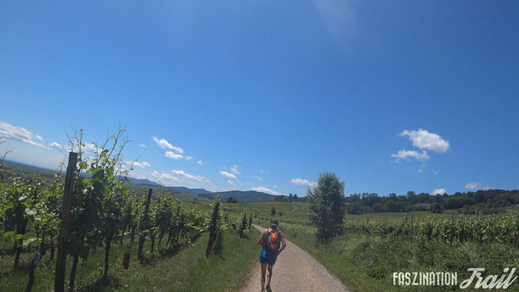 Trail du Taennchel