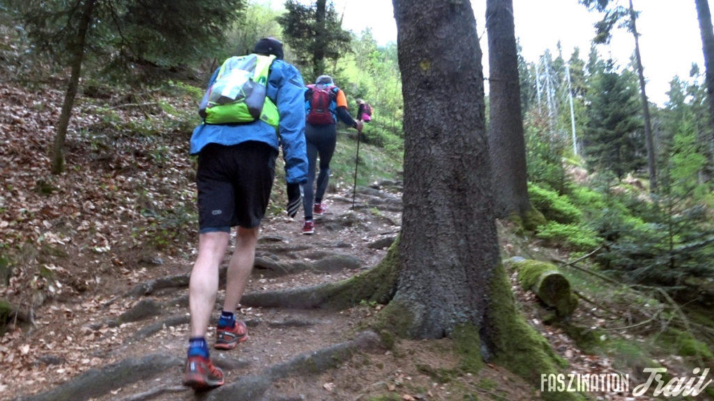 Trail du Wurzel