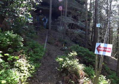 Trail du Wurzel - Rocher des Fees