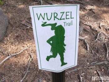 Trail du Wurzel 2017