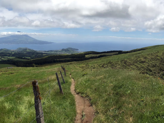 Azores Trail Run: Pico Panorama