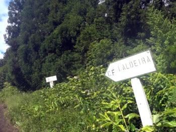 Azores Trail Run: Aufstieg zur Caldeira