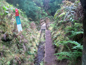 Azores Trail Run: Levada Trail