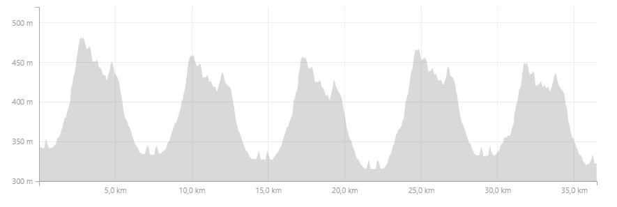 Profil Bärenfels Heiligabend Marathon