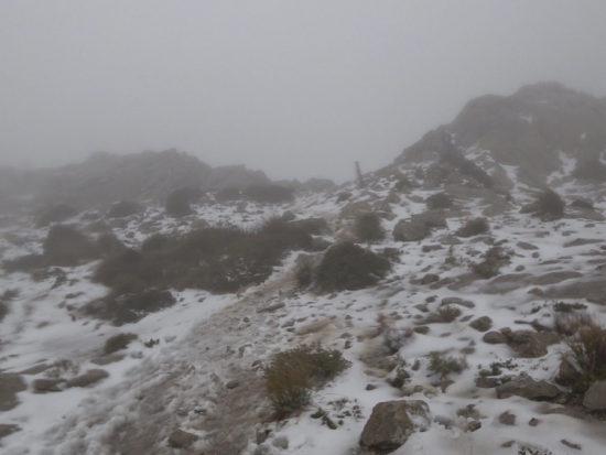 CXM Serra Nord 2018 - Coll des Prat de Massanella