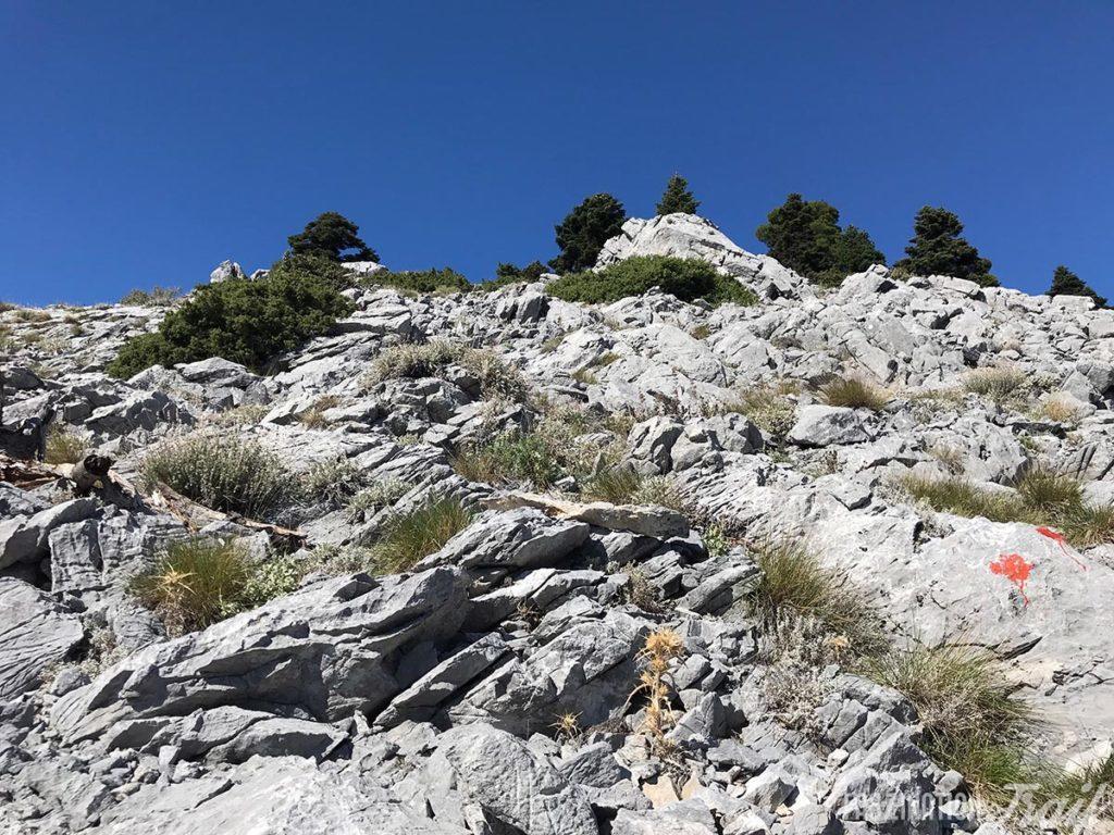 Trailrunning Euböa Dirfys