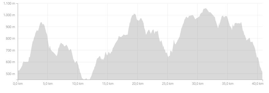 Profil Trail Hivernal de la Moselotte