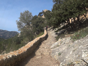 Tramuntana Travessa 2018 Castell d'Alaró