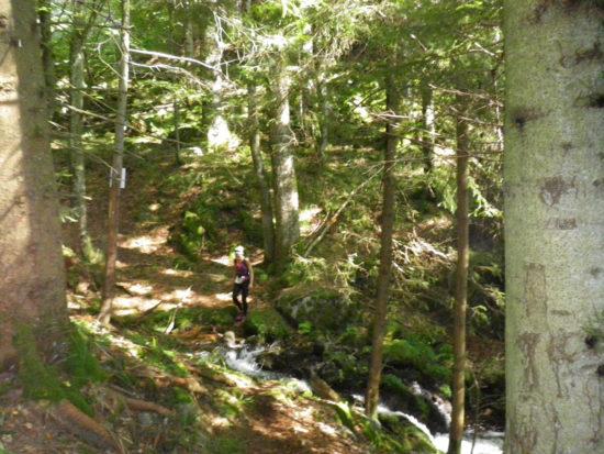 Rainkopf Trail 2016